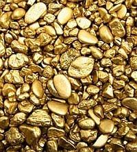pepitas de ouro