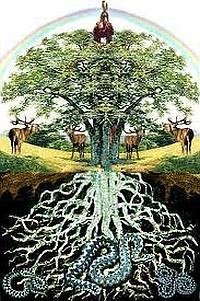 Jóias inspiradas em árvores