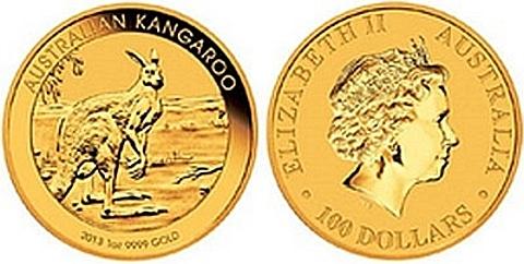 O Kanguru Australiano